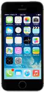 Apple iPhone 5S Unlocked Space