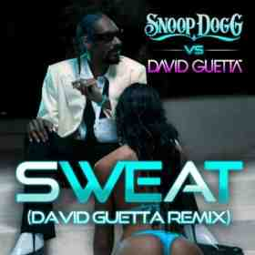 Sweat Snoop David Guetta Remix