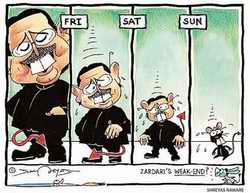 Zardari cartoon
